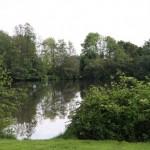 Der See 1